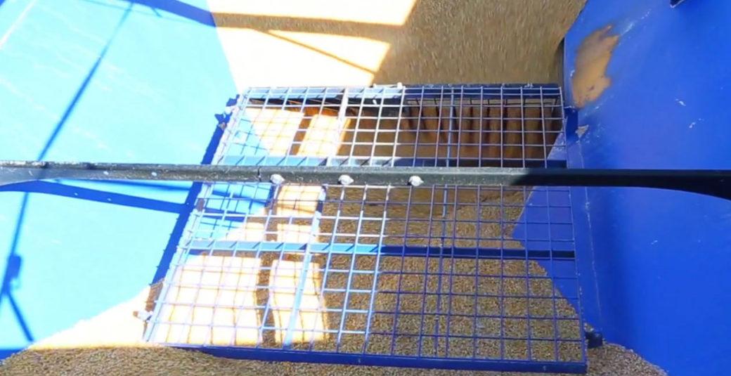 Grain Cart Clean-out